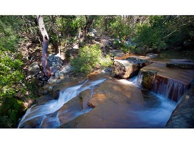 Garawarra State Conservation Area | Picture: National Parks NSW