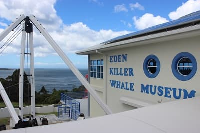 Killer Whale Museum